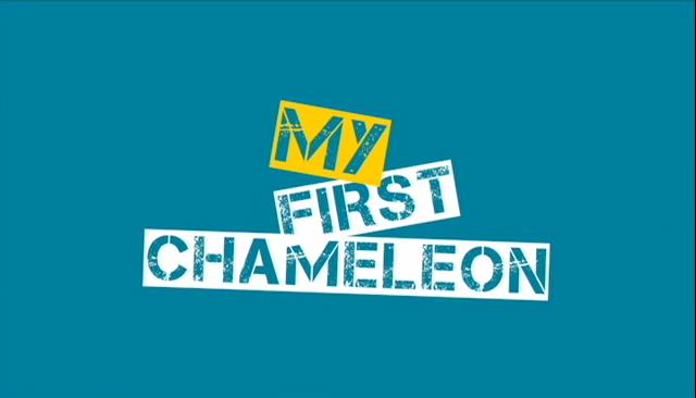 moj pierwszy kameleon
