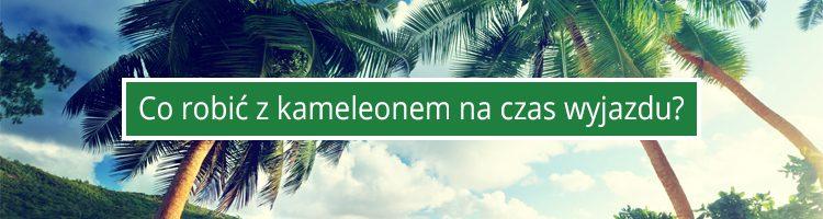 urlop-kameleon